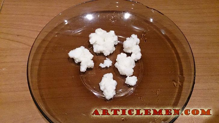 тибетский молочный гриб фото