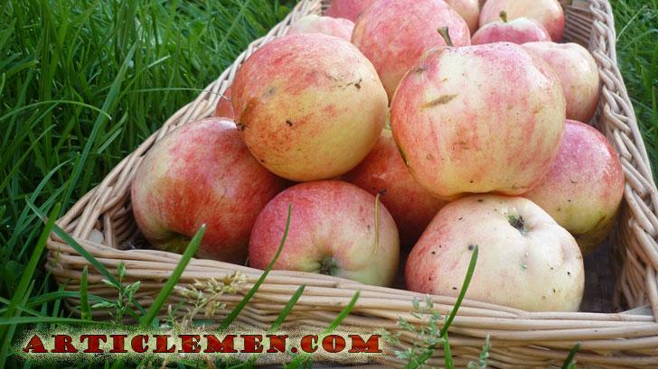 яблоки от инсульта